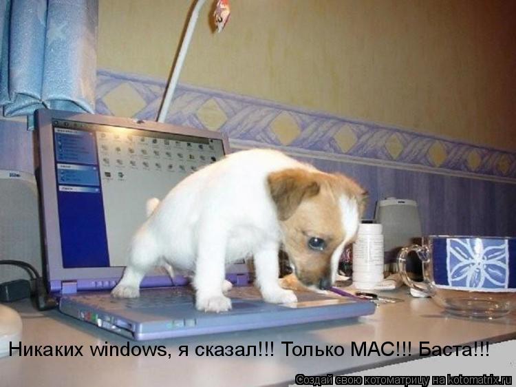 Котоматрица: Никаких windows, я сказал!!! Только MAC!!! Баста!!!