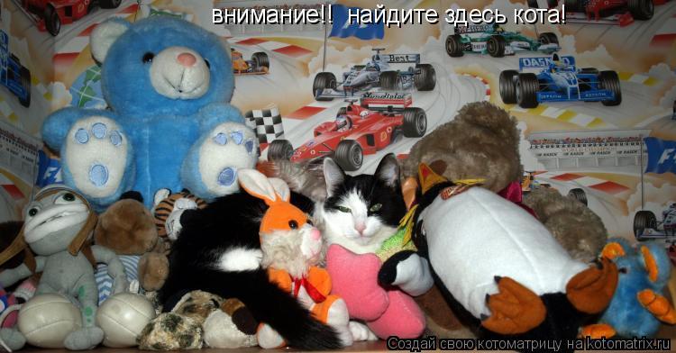 Котоматрица: внимание!!  найдите здесь кота!