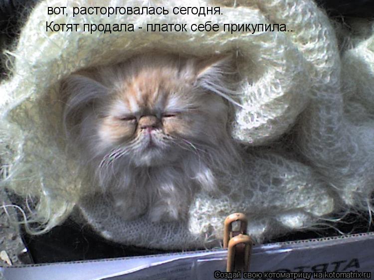 Котоматрица: вот, расторговалась сегодня. Котят продала - платок себе прикупила..