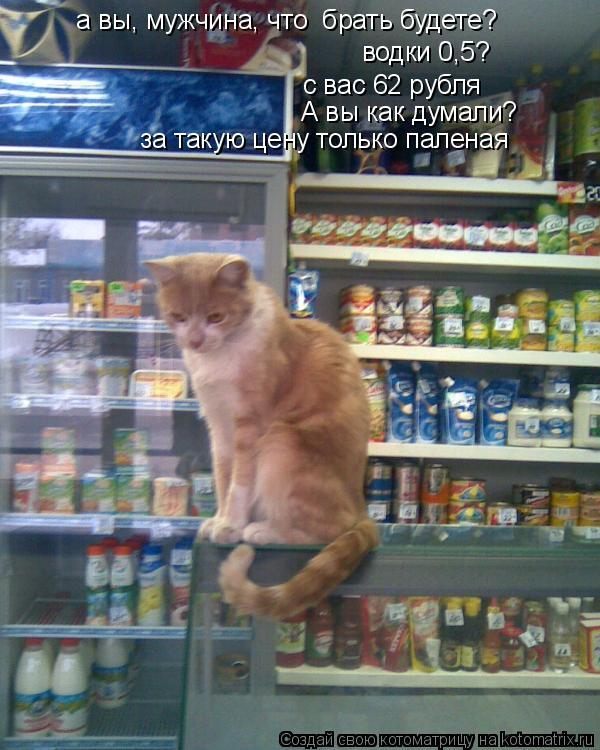 Котоматрица: а вы, мужчина, что  брать будете? водки 0,5? с вас 62 рубля А вы как думали?  за такую цену только паленая