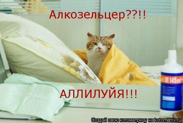 Котоматрица: Алкозельцер??!! АЛЛИЛУЙЯ!!!