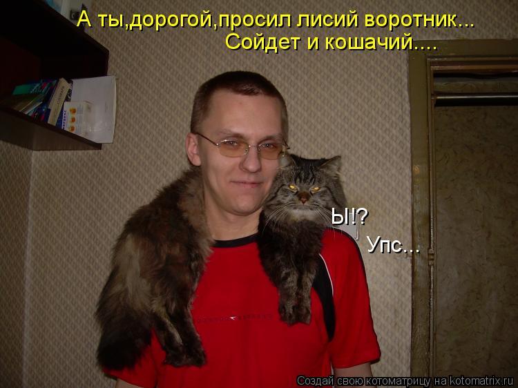 Котоматрица: А ты,дорогой,просил лисий воротник... Сойдет и кошачий.... Ы!? Упс...