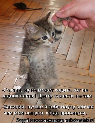Котоматрица: -Хозяин, ну не может ходить кот на задних лапах! Центр тяжести не там. -Василий, лучше я тебя научу сейчас, чем мой сынуля, когда проснется.