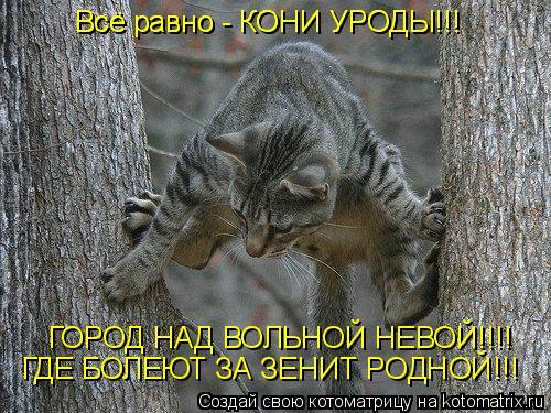 Котоматрица: Всё равно - КОНИ УРОДЫ!!! Всё равно - КОНИ УРОДЫ!!! ГОРОД НАД ВОЛЬНОЙ НЕВОЙ!!!! ГОРОД НАД ВОЛЬНОЙ НЕВОЙ!!!! ГДЕ БОЛЕЮТ ЗА ЗЕНИТ РОДНОЙ!!!
