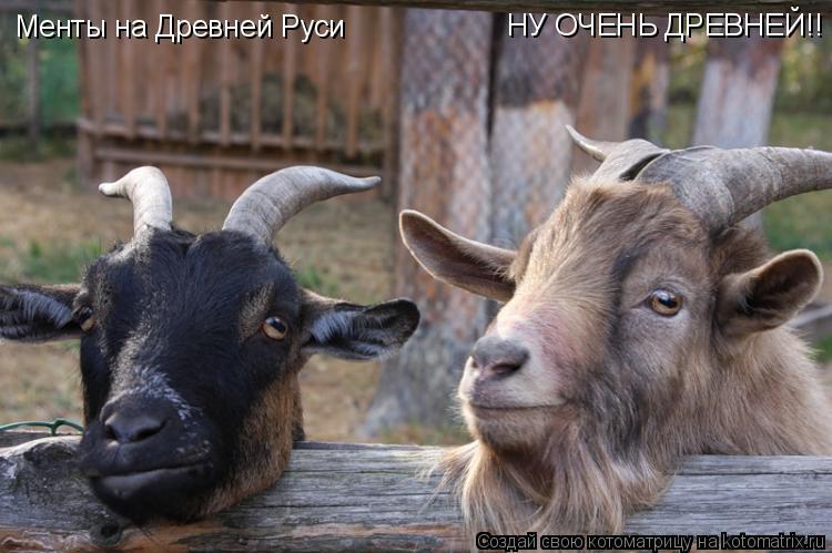 Котоматрица: Менты на Древней Руси НУ ОЧЕНЬ ДРЕВНЕЙ!!