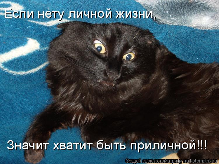 Котоматрица: Если нету личной жизни, Значит хватит быть приличной!!!