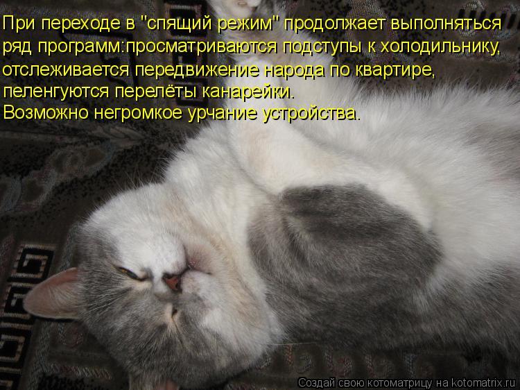 """Котоматрица: При переходе в """"спящий режим"""" продолжает выполняться ряд программ:просматриваются подступы к холодильнику, отслеживается передвижение на"""