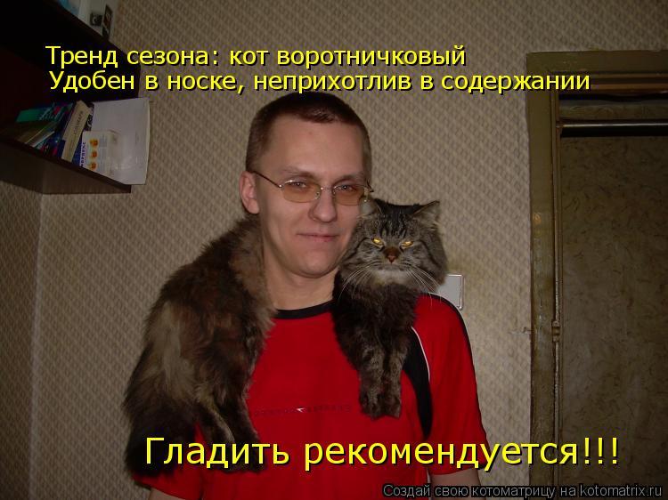 Котоматрица: Тренд сезона: кот воротничковый Удобен в носке, неприхотлив в содержании Гладить рекомендуется!!!