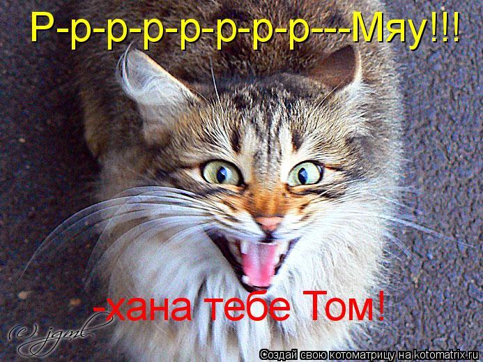 Котоматрица: Р-р-р-р-р-р-р-р---Мяу!!! -хана тебе Том!