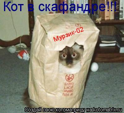 Котоматрица: Кот в скафандре!!! Мурзик-02