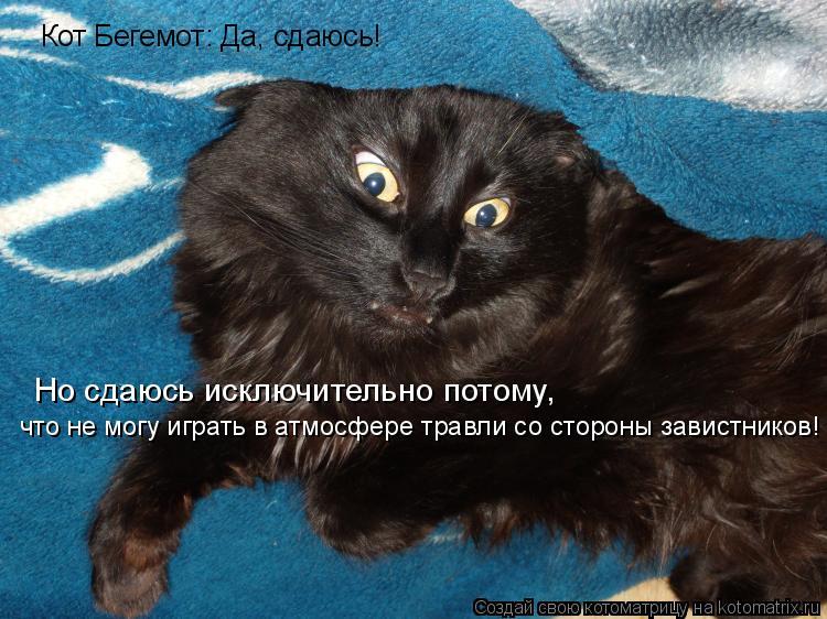 Котоматрица: Кот Бегемот: Да, сдаюсь! Но сдаюсь исключительно потому, что не могу играть в атмосфере травли со стороны завистников!