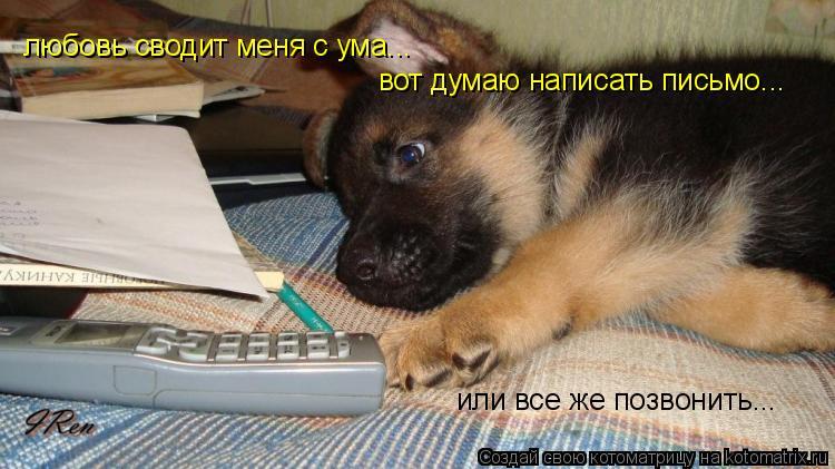 Котоматрица: любовь сводит меня с ума... вот думаю написать письмо... или все же позвонить...