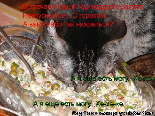 Котоматрица: Встречаю Новый Год мордой в салате. Невкусный он...С горохом.... А вам слабо так нажраться? А я ещё есть могу...Хе-хе-хе. А я ещё есть могу...Хе-хе-х