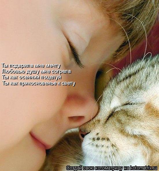 Котоматрица: Ты подарила мне мечту Любовью душу мне согрела Ты как осенний поцелуй Ты как прикосновенье к свету