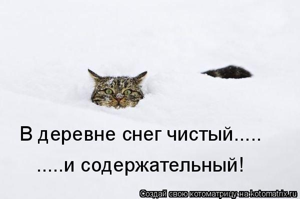 Котоматрица: В деревне снег чистый..... .....и содержательный!
