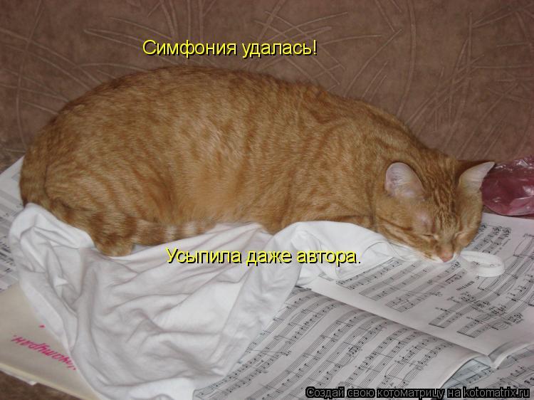 Котоматрица: Симфония удалась!  Усыпила даже автора.