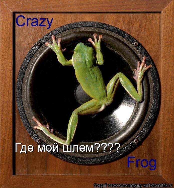 Котоматрица: Crazy Frog Где мой шлем????