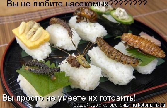 Котоматрица: Вы не любите насекомых???????? Вы просто не умеете их готовить!