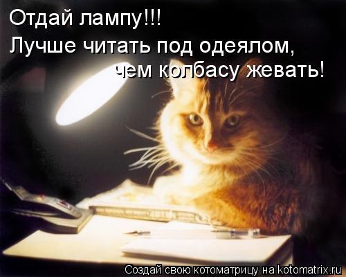Котоматрица: Отдай лампу!!! Лучше читать под одеялом, чем колбасу жевать!