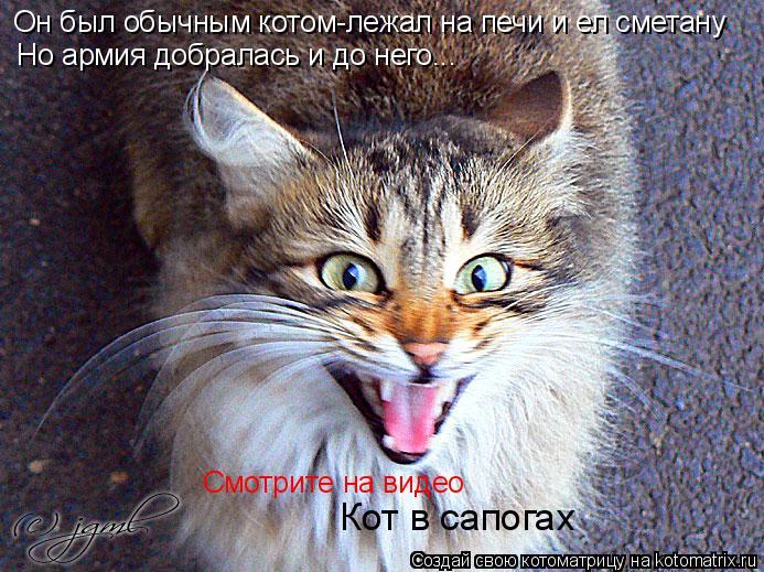 Котоматрица: Он был обычным котом-лежал на печи и ел сметану Но армия добралась и до него... Смотрите на видео Кот в сапогах