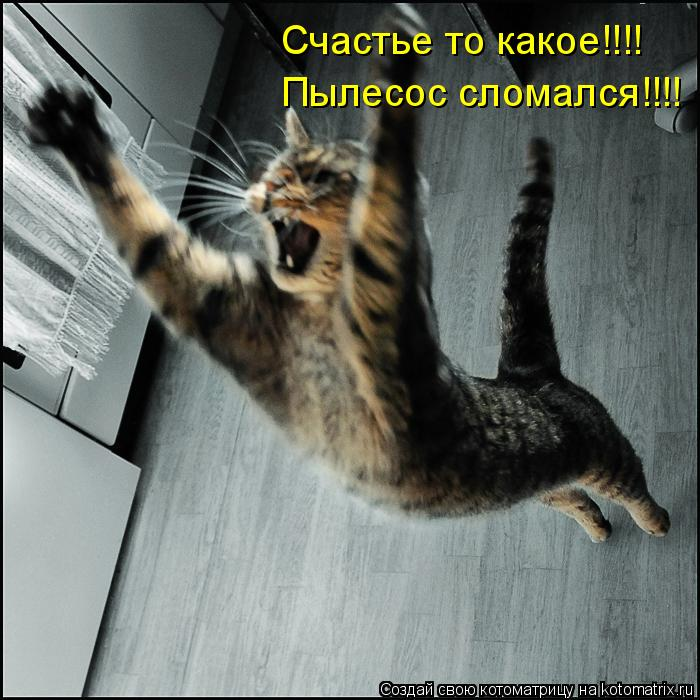 Котоматрица: Счастье то какое!!!! Пылесос сломался!!!!