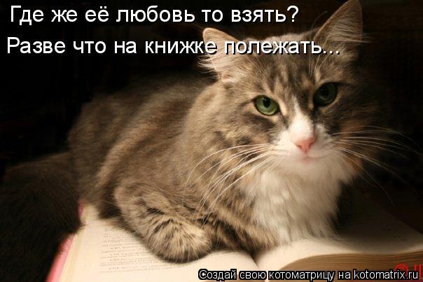 Котоматрица: Где же её любовь то взять? Разве что на книжке полежать...