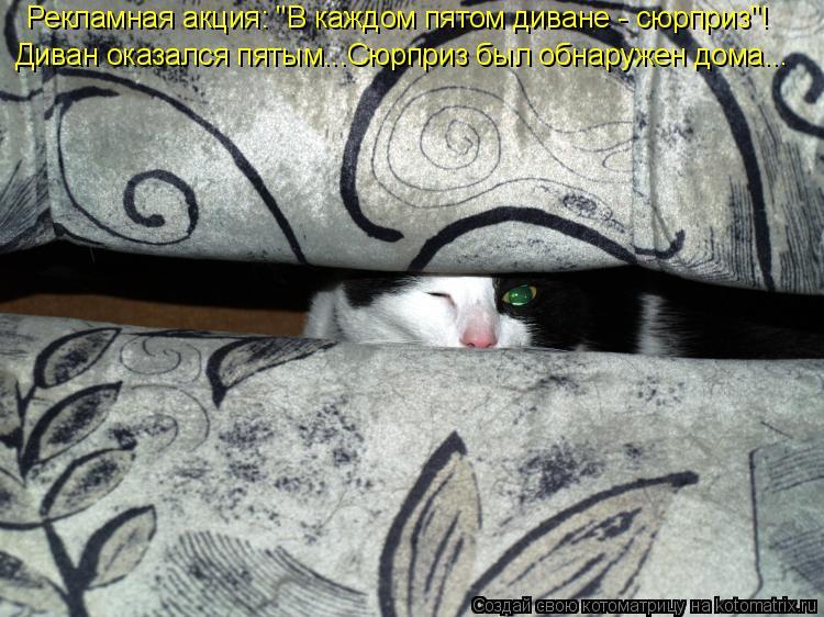 """Котоматрица: Рекламная акция: """"В каждом пятом диване - сюрприз""""! Диван оказался пятым...Сюрприз был обнаружен дома..."""