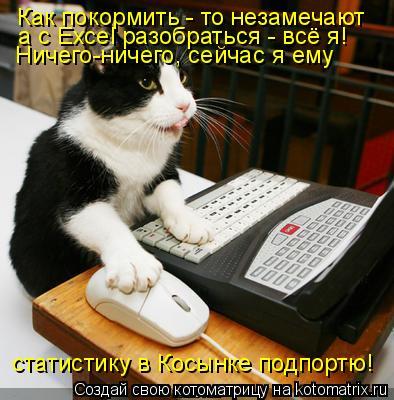 Котоматрица: Как покормить - то незамечают а с Excel разобраться - всё я! Ничего-ничего, сейчас я ему статистику в Косынке подпортю!
