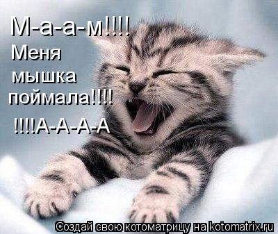 Котоматрица: М-а-а-м!!!! Меня поймала!!!! мышка !!!!А-А-А-А