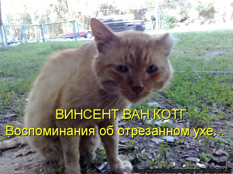 Котоматрица: ВИНСЕНТ ВАН КОТГ Воспоминания об отрезанном ухе...