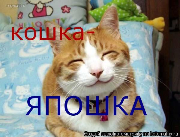 Котоматрица: кошка- ЯПОШКА