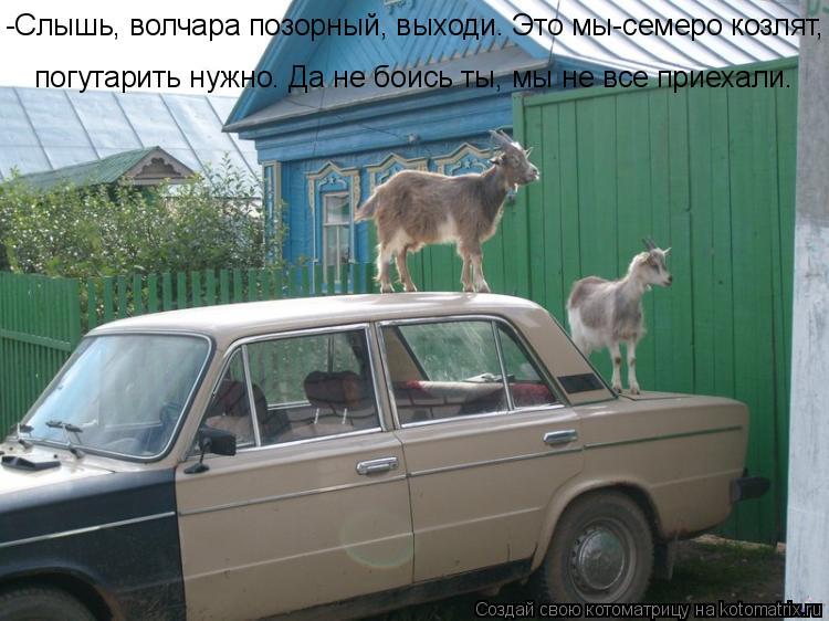 Котоматрица: -Слышь, волчара позорный, выходи. Это мы-семеро козлят, погутарить нужно. Да не боись ты, мы не все приехали.  погутарить нужно. Да не боись ты,