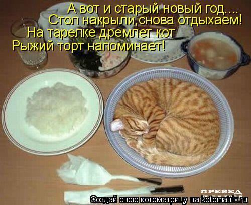 Котоматрица: А вот и старый новый год.... Стол накрыли,снова отдыхаем! На тарелке дремлет кот Рыжий торт напоминает!
