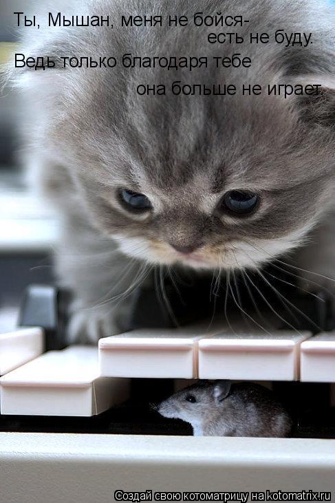 Котоматрица: Ты, Мышан, меня не бойся- есть не буду. Ведь только благодаря тебе  она больше не играет.
