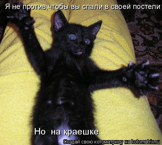 Котоматрица: Я не против,чтобы вы спали в своей постели Но  на краешке