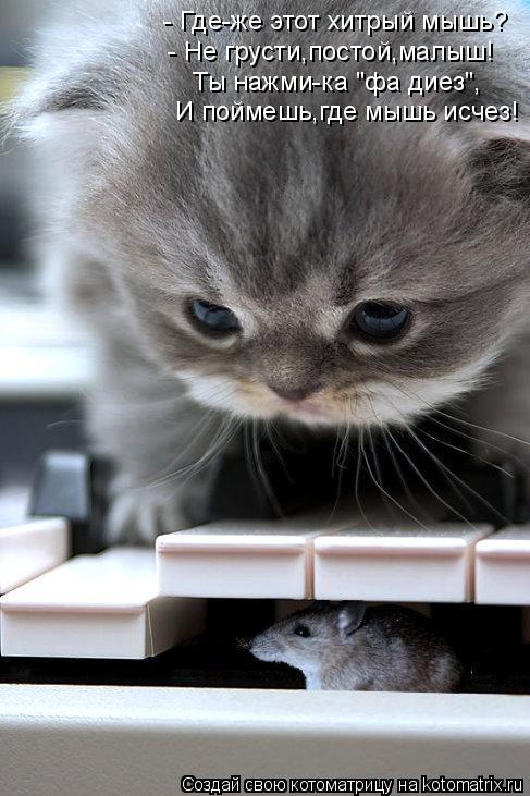 """Котоматрица: - Где-же этот хитрый мышь?  - Не грусти,постой,малыш!  Ты нажми-ка """"фа диез"""", И поймешь,где мышь исчез!"""