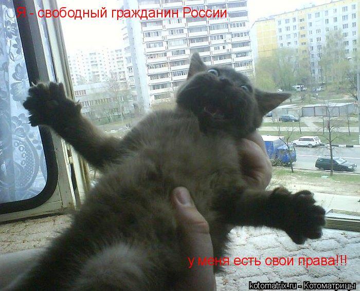 Котоматрица: Я - свободный гражданин России у меня есть свои права!!!