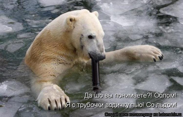Котоматрица: Да шо вы понимаете?! Облом! Я с трубочки водичку пью! Со льдом!