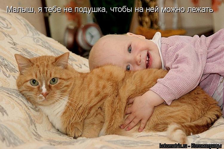 Котоматрица: Малыш, я тебе не подушка, чтобы на ней можно лежать