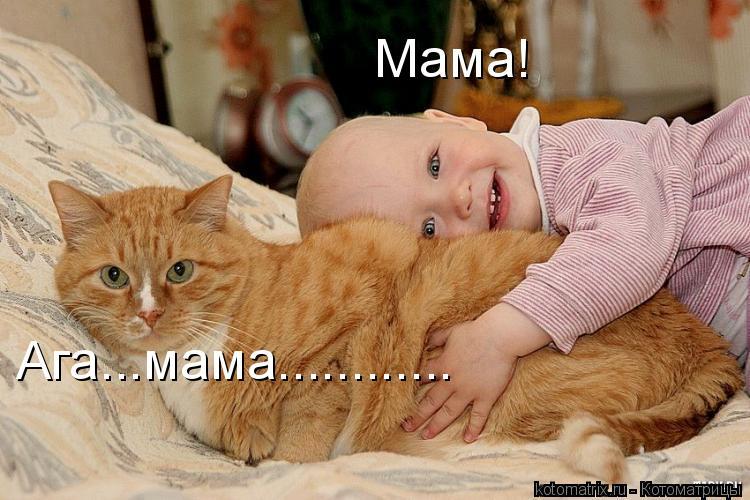 Котоматрица: Мама! Ага...мама............