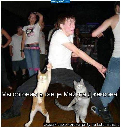 Котоматрица: Мы обгоним в танце Майкла Джексона!