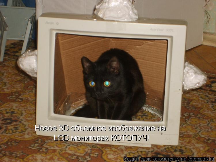 Котоматрица: LCD мониторах КОТОПУЧ! Новое 3D объемное изображение на
