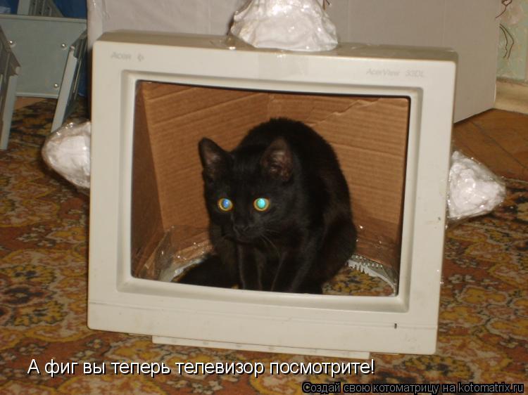 Котоматрица: А фиг вы теперь телевизор посмотрите!