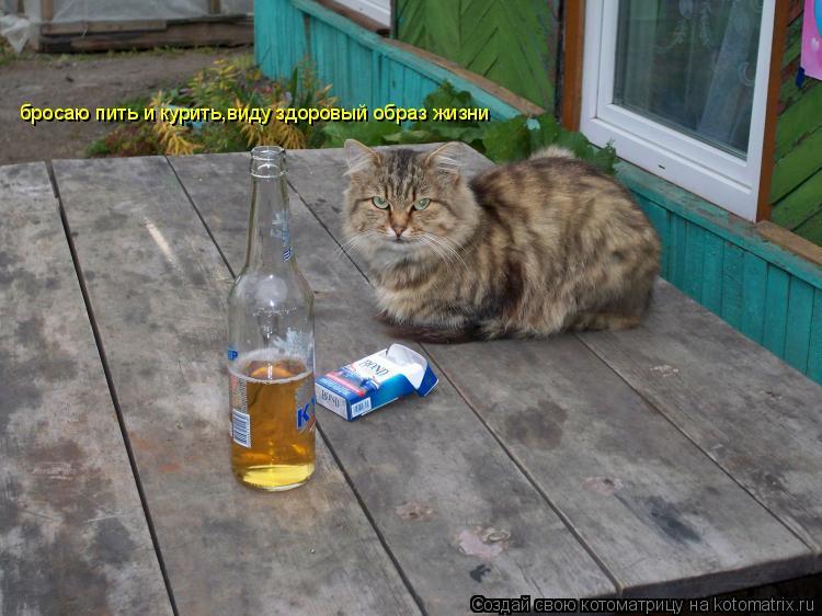 алкоголиком как разговаривать с-3