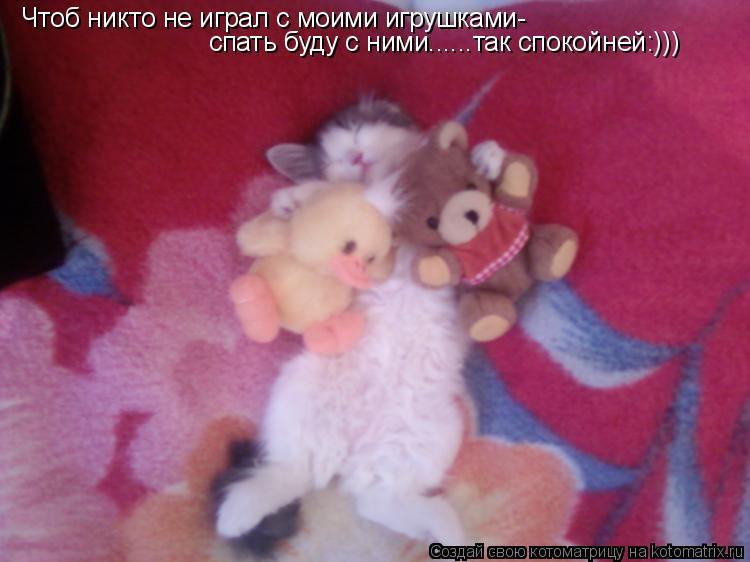 Котоматрица: Чтоб никто не играл с моими игрушками- спать буду с ними......так спокойней:)))