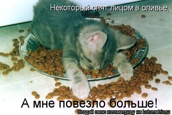 Котоматрица: Некоторый спят лицом в оливье, А мне повезло больше!