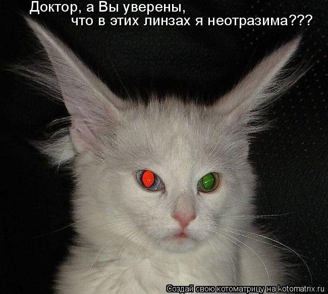 Котоматрица: Доктор, а Вы уверены,  что в этих линзах я неотразима???