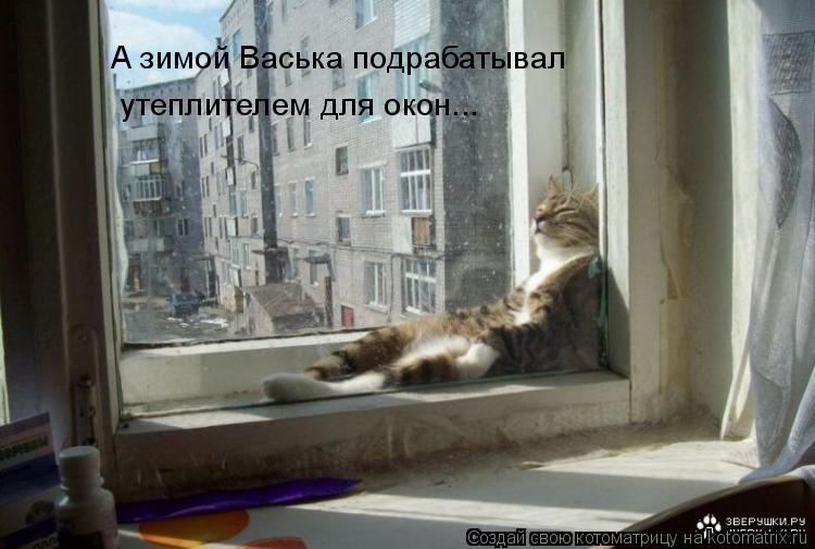 Котоматрица: А зимой Васька подрабатывал утеплителем для окон...