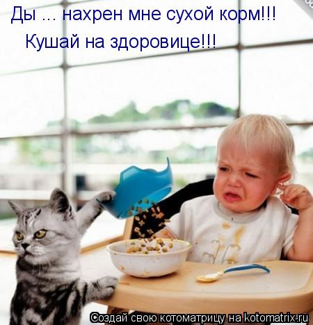 Котоматрица: Ды ... нахрен мне сухой корм!!! Кушай на здоровице!!!