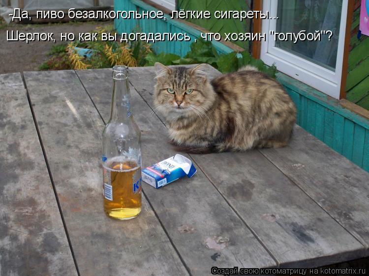 """Котоматрица: -Да, пиво безалкогольное, лёгкие сигареты...  Шерлок, но как вы догадались , что хозяин """"голубой""""?"""